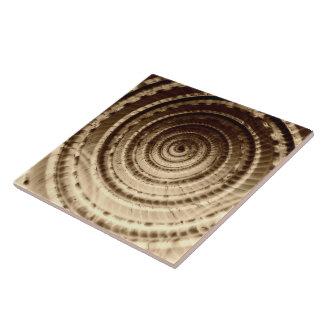 Baldosa cerámica del extracto del Seashell de la s