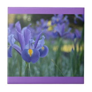 Baldosa cerámica del iris púrpura azulejo cuadrado pequeño