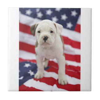 Baldosa cerámica del perrito patriótico de Pitbull Azulejo Cuadrado Pequeño