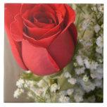 Baldosa cerámica del rosa rojo tejas  cerámicas