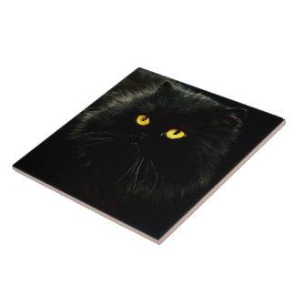Baldosa cerámica grande del gato negro azulejo cuadrado grande