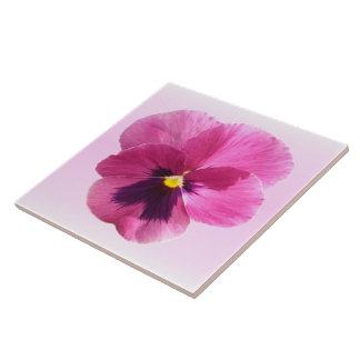 Baldosa cerámica - pensamiento rosado oscuro azulejo