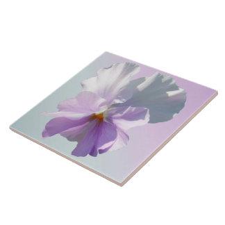 Baldosa cerámica - pensamiento rosado rizado azulejo cerámica