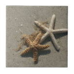 Baldosa cerámica Trivet de las estrellas de mar Teja
