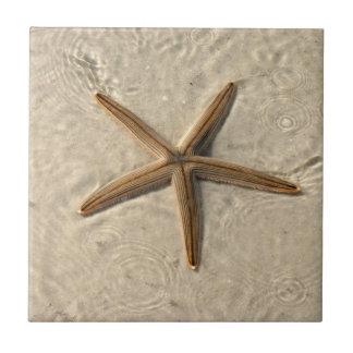 Baldosa cerámica Trivet de las estrellas de mar Azulejo Cerámica