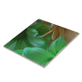 Baldosa cerámica - un centro más bajo - grupo 1 de azulejo cuadrado grande
