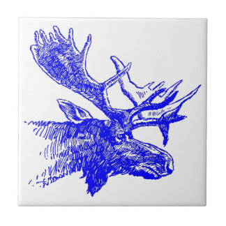 Baldosas cerámicas de la sombra del Finn de los al Azulejo Cuadrado Pequeño