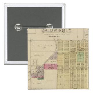 Baldwin City, Douglas County, Kansas Pinback Button