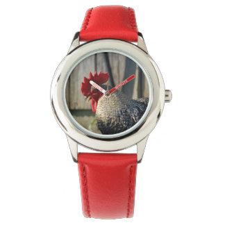 Baldwin Farm Rooster Watch