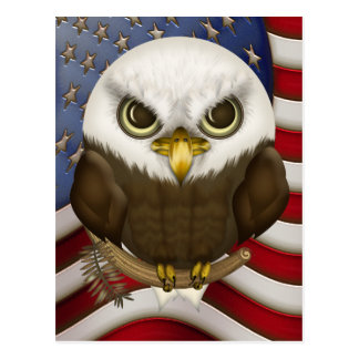 Baldwin The Cute Bald Eagle Postcard