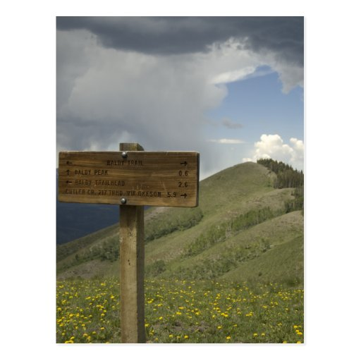 baldy peak trail post cards