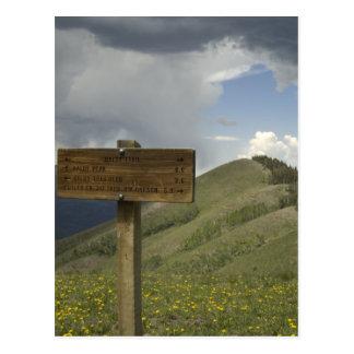 baldy peak trail postcard