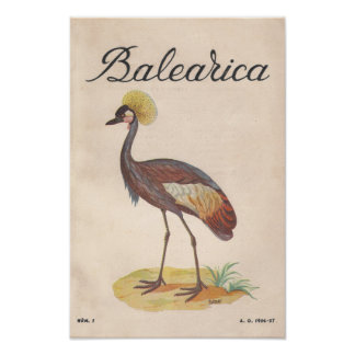 Balearica Vintage French Art Print 1956