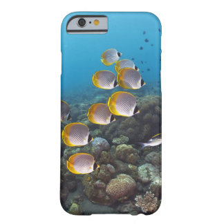 Bali, Indonesia Barely There iPhone 6 Case