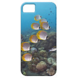 Bali, Indonesia Funda Para iPhone SE/5/5s
