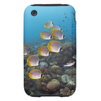 Bali, Indonesia iPhone 3 Tough Cover