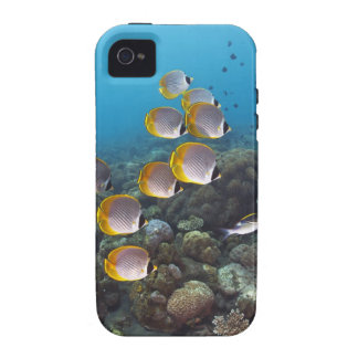 Bali, Indonesia iPhone 4/4S Cover