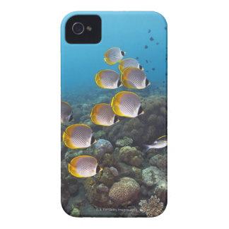 Bali, Indonesia iPhone 4 Case