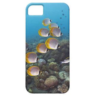 Bali, Indonesia iPhone 5 Cases