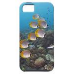 Bali, Indonesia iPhone 5 Cover