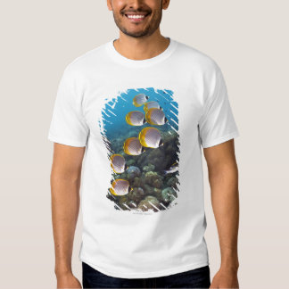 Bali, Indonesia T Shirts