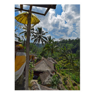 Bali Indonesia Terraced Rice Fields Postcard
