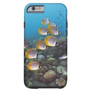 Bali, Indonesia Tough iPhone 6 Case