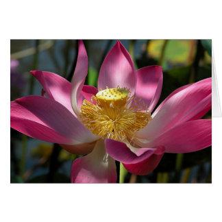 Bali Lotus Card