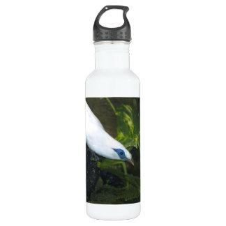 Bali Myna 24oz Water Bottle