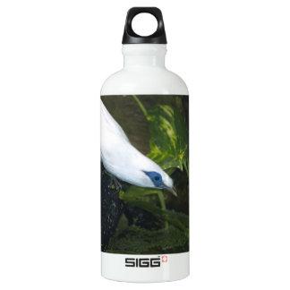 Bali Myna SIGG Traveler 0.6L Water Bottle