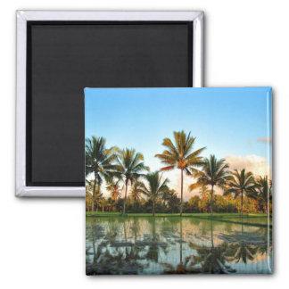 Bali Palm Trees magnet