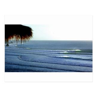 Bali que practica surf