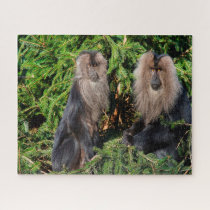 Balinese long tailed Macaques. Jigsaw Puzzle
