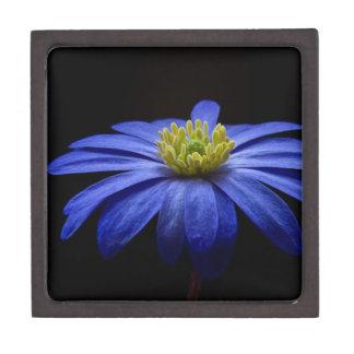 balkan-anemone jewelry box