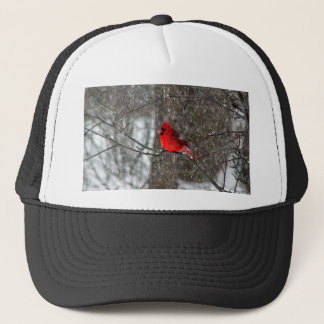 ball hat with photo of male cardinal