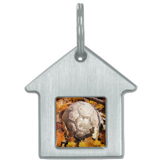 ball in the woods pet tag