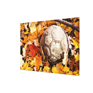 ball in the woods stretched canvas print