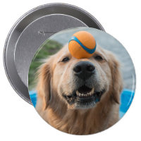 Ball Joey Pinback Button