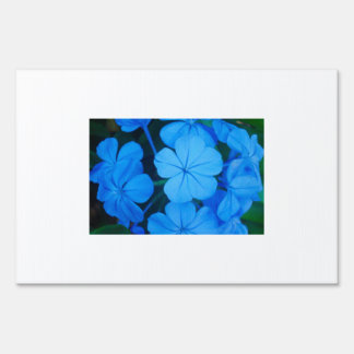 Ball Of Blue Flowers Yard Sign