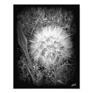 Ball Of Fire Photo Print