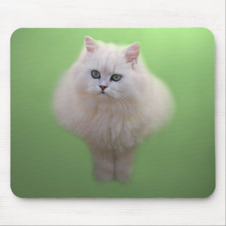 Ball of fluff kitten mouse pad