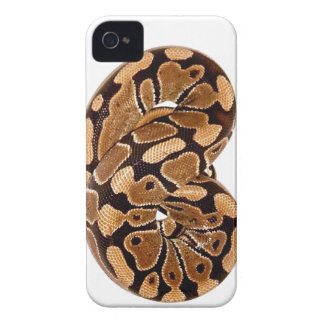 Ball Python Case-Mate iPhone 4 Barely There Univer