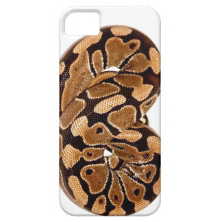 Ball Python Case-Mate iPhone 5 Barely There Univer