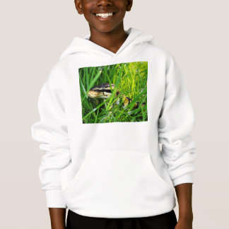 ball python in grass.png hoodie