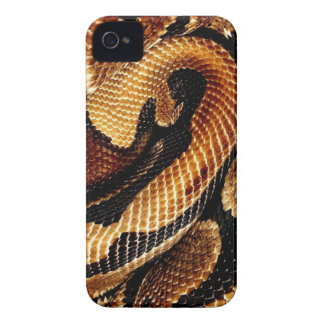Ball Python iPhone 4 Case-Mate Case