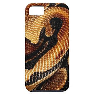 Ball Python iPhone SE/5/5s Case