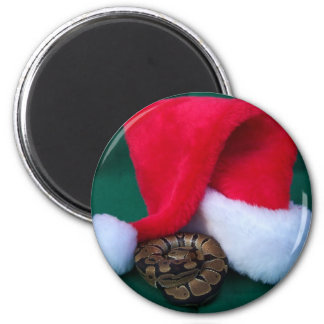 Ball Python next to Santa Hat, snake Christmas 2 Inch Round Magnet