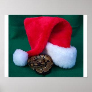 Ball Python next to Santa Hat, snake Christmas Poster