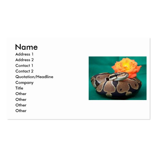 Ball python picture with orange rose green back business card templates