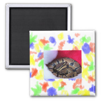 Ball Python Snake in Santa hat picture 2 Inch Square Magnet
